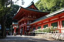 晩秋の氷川神社
