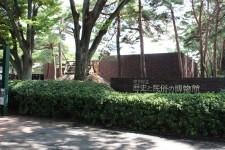 歴史と民俗の博物館